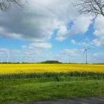 InnoEnergy organiseert evenement voor duurzame energie-innovaties op 17 en 18 oktober in Kopenhagen