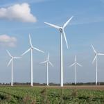 Provincie Noord-Holland verleent vergunning voor windpark Spuisluis