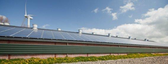 RVO Beeldbank Windmolens en zonnepanelen header