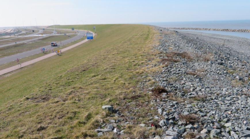 Rijkswaterstaat start aanbesteding windpark Maasvlakte 2