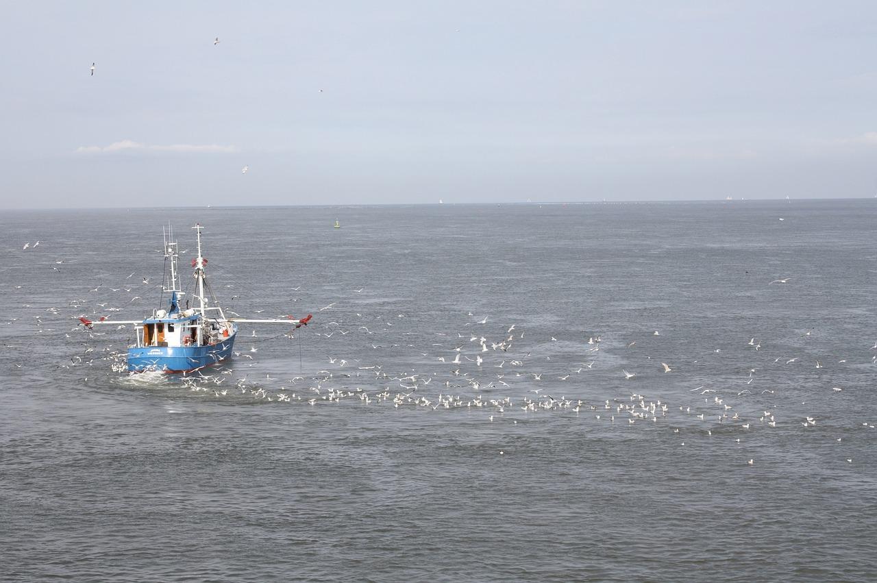 Europarlementariër Peter van Dalen onderzoekt impact offshore windparken op visserijsector