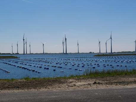 Onshore windvermogen in 2019 blijft sterk achter bij 2020 doelstelling