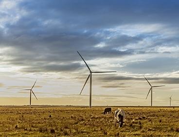 Acciona realiseert onshore windpark met meer dan 1 GW vermogen