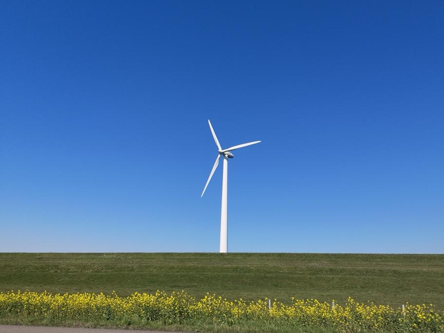 Duurzame stroomopwekking in Europa groeit met 14% in Q1 2020