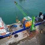 TenneT en Van Oord starten onderzoek naar verbetering biodiversiteit bij kabelkruisingen in de Noordzee