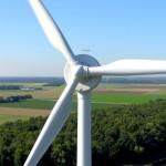 Natuurmonumenten: Geen windmolens op de Veluwe