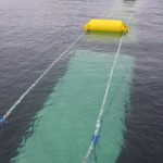 Zeewierfarm levert duurzame energie net als windturbines