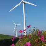 Extra SDE+ subsidie voor windarme regio's