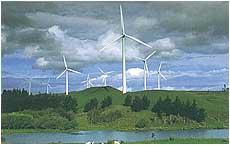 Windpark Nieuw Z