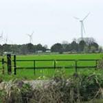 Eventuele komst windpark Koningspleij in Arnhem houdt rekening met vogelsoort De Wulp