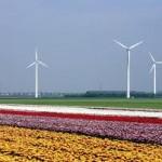 Flevoland bereidt noodverordening voor windturbines