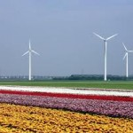 Lelystad wil afspraken over verdeling opbrengsten windturbines